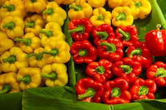 Ανάμεικτα πιπέρια κουδουνιών στα διάφορα χρώματα στο φύλλο μπανανών σε FR Στοκ Εικόνες