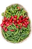 ανάμεικτα πιπέρια παρουσί&al Στοκ Εικόνα