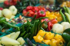 Ανάμεικτα φρέσκα λαχανικά στην αγορά Στοκ φωτογραφία με δικαίωμα ελεύθερης χρήσης