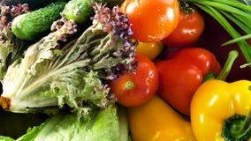 Ανάμεικτα φρέσκα λαχανικά και χορτάρια Η επιλογή περιλαμβάνει τα καρότα, πατάτες, αγγούρι, ντομάτα, λάχανο, μαρούλι, τεύτλα φιλμ μικρού μήκους