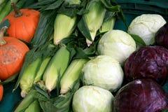 ανάμεικτα φρέσκα λαχανικά Στοκ Εικόνα