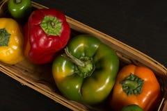 Ανάμεικτα φρέσκα πιπέρια στο καλάθι Στοκ εικόνες με δικαίωμα ελεύθερης χρήσης