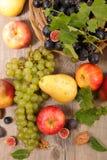 Ανάμεικτα φρούτα φθινοπώρου Στοκ Φωτογραφία