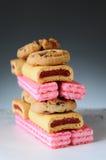 Ανάμεικτη στοίβα μπισκότων Στοκ Εικόνες