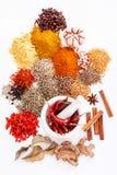 Ανάμεικτος του μαύρου πιπεριού καρυκευμάτων, άσπρο πιπέρι, fenugreek, κύμινο, β στοκ φωτογραφία με δικαίωμα ελεύθερης χρήσης
