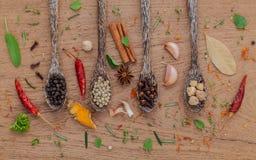 Ανάμεικτος των καρυκευμάτων στο ξύλινο μαύρο πιπέρι κουταλιών, άσπρο πιπέρι, Στοκ Εικόνες