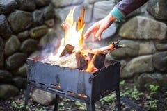 Ανάμεικτο εύγευστο ψημένο στη σχάρα κρέας με το λαχανικό πέρα από τους άνθρακες σε μια σχάρα Στοκ Φωτογραφία