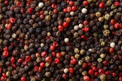 ανάμεικτο πιπέρι δημητριακών Στοκ φωτογραφίες με δικαίωμα ελεύθερης χρήσης