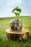 Ανάπτυξη εγκαταστάσεων στο βάζο γυαλιού νομισμάτων για τα χρήματα στην πράσινη χλόη Στοκ εικόνες με δικαίωμα ελεύθερης χρήσης