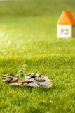Ανάπτυξη εγκαταστάσεων στο βάζο γυαλιού νομισμάτων για τα χρήματα στην πράσινη χλόη Στοκ Εικόνα