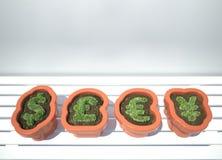 ανάπτυξη νομίσματος Στοκ φωτογραφία με δικαίωμα ελεύθερης χρήσης