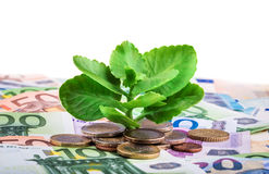 Ανάπτυξη πράσινων εγκαταστάσεων στα τραπεζογραμμάτια και τα ευρο- νομίσματα Στοκ εικόνα με δικαίωμα ελεύθερης χρήσης