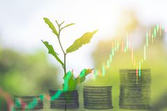 Ανάπτυξη της τράπεζας νομισμάτων αποταμίευσης χρημάτων με το νεαρό βλαστό πράσινων εγκαταστάσεων στοκ εικόνες