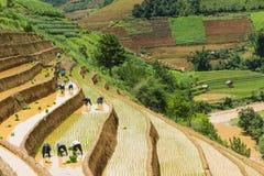 Ανάπτυξη του ρυζιού στη MU Cang Chai, γεν Bai, Βιετνάμ Στοκ εικόνες με δικαίωμα ελεύθερης χρήσης