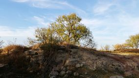 Ανάχωμα και δέντρο ψαμμίτη στην κορυφή Στοκ φωτογραφίες με δικαίωμα ελεύθερης χρήσης