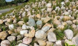 Ανάχωμα που καλύπτεται πετρώδες με την αλογουρά Equisetum Στοκ Φωτογραφία
