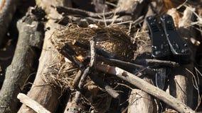 Ανάψτε μια πυρκαγιά από την ξηρά χλόη, το ξύλο και το καυσόξυλο στοκ φωτογραφία με δικαίωμα ελεύθερης χρήσης
