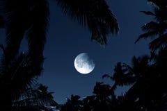 ανάψτε το φεγγάρι Στοκ εικόνα με δικαίωμα ελεύθερης χρήσης