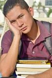 Ανήσυχος σπουδαστής αγοριών με τα σημειωματάρια στοκ φωτογραφία