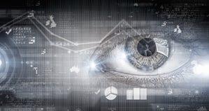 Ανίχνευση ματιών σωστό μόνιμο κείμενο υπολοίπου εικόνας ειδωλίων έννοιας COM Στοκ φωτογραφία με δικαίωμα ελεύθερης χρήσης