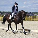 αναβάτης αλόγων εκπαίδευσης αλόγου σε περιστροφές στοκ φωτογραφίες με δικαίωμα ελεύθερης χρήσης