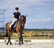αναβάτης αλόγων εκπαίδευσης αλόγου σε περιστροφές στοκ εικόνες με δικαίωμα ελεύθερης χρήσης