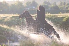 Αναβάτης πλατών αλόγου σε ένα άλογο Στοκ φωτογραφίες με δικαίωμα ελεύθερης χρήσης