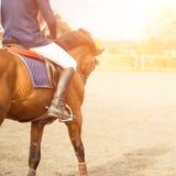 Αναβάτης πλατών αλόγου στον τομέα με το διάστημα αντιγράφων κατά μέρος Στοκ φωτογραφίες με δικαίωμα ελεύθερης χρήσης