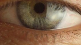 Αναβοσβήνοντας την αρσενική κινηματογράφηση σε πρώτο πλάνο ματιών που κοιτάζει γύρω κόκκινη αρτηρία στη μακροεντολή βολβών του μα απόθεμα βίντεο