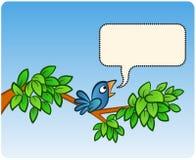 αναγγελία του πουλιού Στοκ φωτογραφία με δικαίωμα ελεύθερης χρήσης