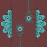 Αναδρομική ανασκόπηση φτερών Peacock Στοκ Εικόνες
