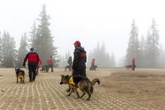 Αναζήτηση και ομάδα διάσωσης Ερυθρών Σταυρών Στοκ εικόνες με δικαίωμα ελεύθερης χρήσης