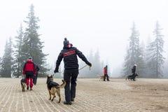 Αναζήτηση και ομάδα διάσωσης Ερυθρών Σταυρών Στοκ φωτογραφία με δικαίωμα ελεύθερης χρήσης