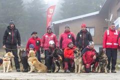 Αναζήτηση και ομάδα διάσωσης Ερυθρών Σταυρών Στοκ Εικόνα