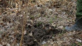 Αναζήτηση του θησαυρού, σκάβοντας έδαφος φιλμ μικρού μήκους
