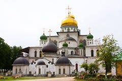 αναζοωγόνηση καθεδρικών ναών Στοκ εικόνα με δικαίωμα ελεύθερης χρήσης