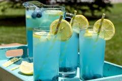 Αναζωογονώντας θερινά ποτά λεμονάδας βακκινίων Στοκ Εικόνες