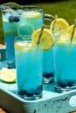 Αναζωογονώντας θερινά ποτά λεμονάδας βακκινίων Στοκ φωτογραφία με δικαίωμα ελεύθερης χρήσης