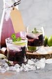 Αναζωογονώντας κοκτέιλ με το βατόμουρο και lavender Στοκ φωτογραφίες με δικαίωμα ελεύθερης χρήσης