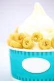 Αναζωογονώντας προκλητικό τροπικό παγωτό δημητριακών φρούτων Στοκ Εικόνα