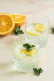 Αναζωογονώντας χυμός σημύδων με το πορτοκάλι μεντών και λεμονιών Στοκ εικόνα με δικαίωμα ελεύθερης χρήσης