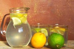 Αναζωογόνηση κατ' οίκον γίνονταυ Limonade Στοκ εικόνες με δικαίωμα ελεύθερης χρήσης