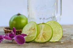 Αναζωογόνηση λεμονάδας Στοκ Εικόνες