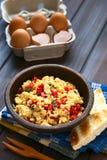 Ανακατωμένα αυγά με το κόκκινο πιπέρι κουδουνιών και τα πράσινα κρεμμύδια Στοκ φωτογραφία με δικαίωμα ελεύθερης χρήσης