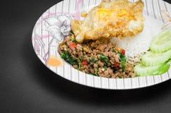 Ανακατώνω-τηγανισμένοι χοιρινό κρέας και βασιλικός Στοκ φωτογραφία με δικαίωμα ελεύθερης χρήσης