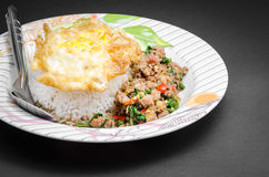 Ανακατώνω-τηγανισμένοι χοιρινό κρέας και βασιλικός Στοκ Εικόνες