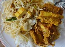 Ανακατώνω-τηγανισμένος νεαρός βλαστός φασολιών με tofu και πικάντικο κόκκαλο χοιρινού κρέατος κάρρυ στο ρύζι Στοκ Φωτογραφία