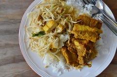 Ανακατώνω-τηγανισμένος νεαρός βλαστός φασολιών με tofu και πικάντικο κόκκαλο χοιρινού κρέατος κάρρυ στο σαφές ρύζι Στοκ φωτογραφία με δικαίωμα ελεύθερης χρήσης