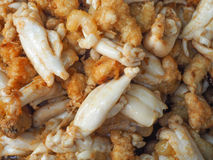 Ανακατώνω-τηγανισμένο αλατισμένο αυγό Στοκ Φωτογραφία