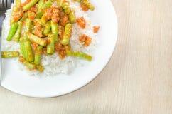Ανακατώστε την τηγανισμένη κόλλα χοιρινού κρέατος και κάρρυ Στοκ Εικόνες